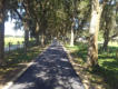 Residential Paving - 1,200' Paved Driveway - Satlow Farm - Ocala, FL 2017